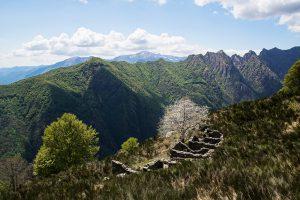 Alpe Pra im Val Grande