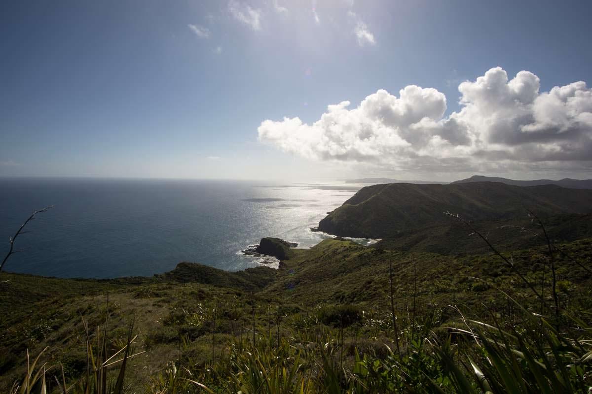 Landschaft von Northland in Neuseeland