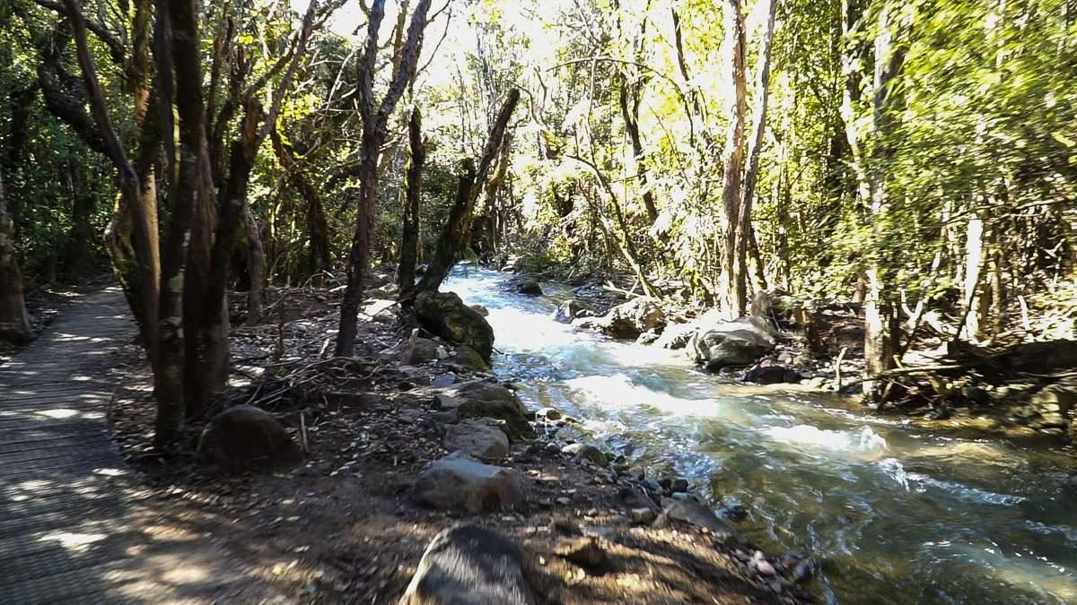 Manga-a-te-tipua Fluss im Tongariro Nationalpark in Neuseeland