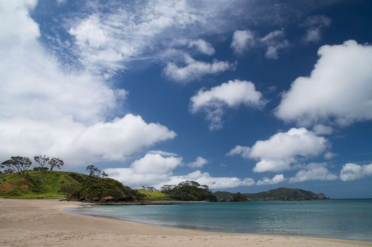 Strand der Elliot Bay (Bay of Islands) in Neuseeland
