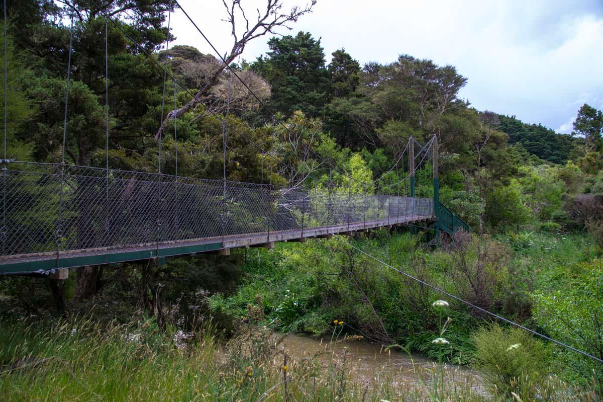 Hängebrücke im Whangarei Falls Scenic Reserve in Neuseeland