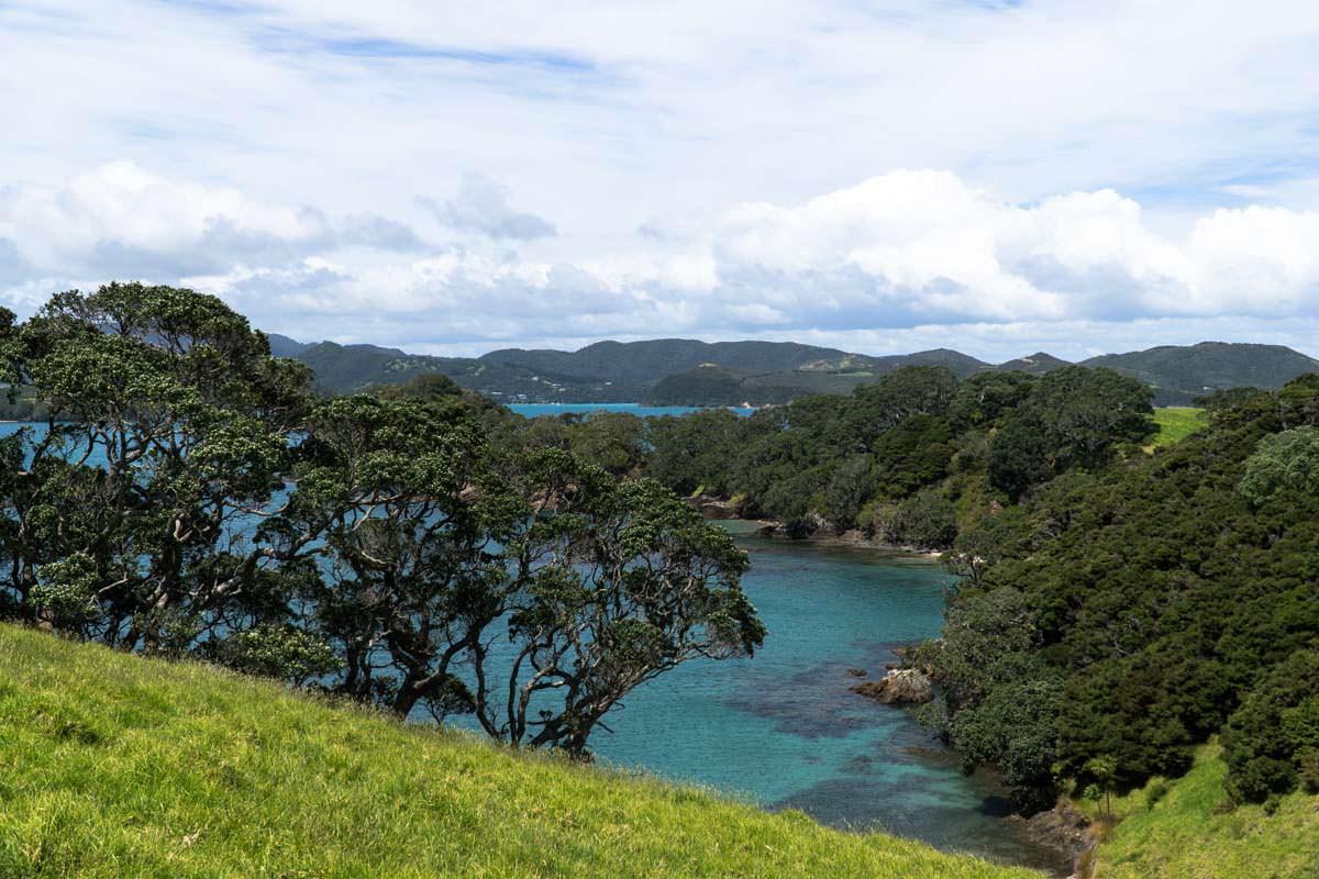 Aussicht von Urupukapuka Island über die Bay of Islands in Neuseeland