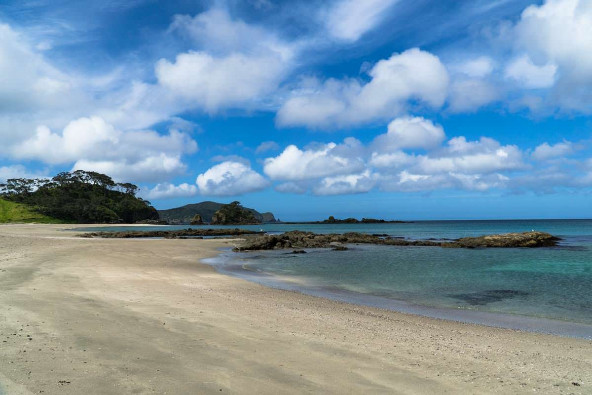 Strand der Elliot Bay (Bay of Islands) in Neuseeland