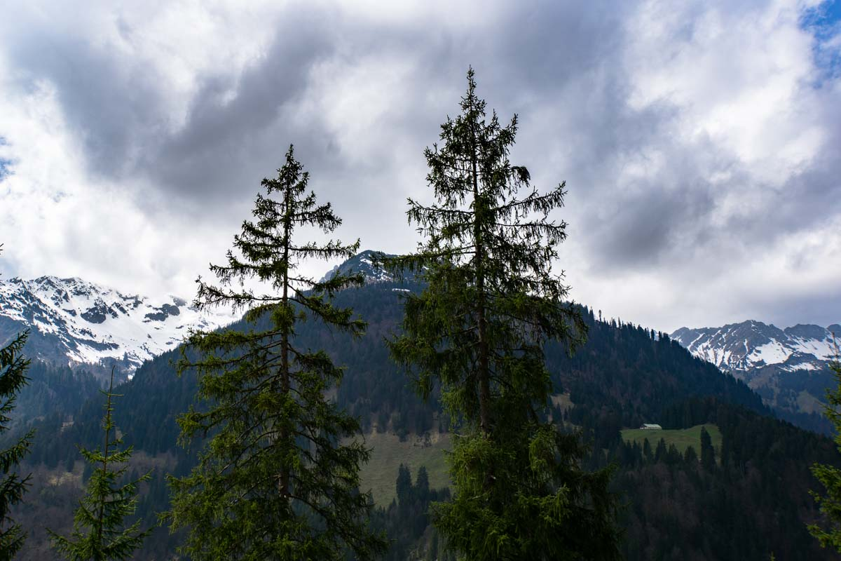 Bergpanorama in Hinterstein im Allgäu