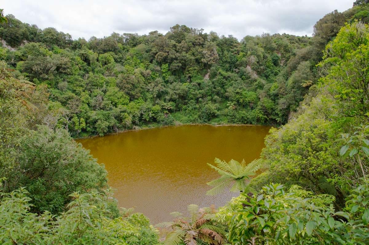 Emerald Lake im Waimangu Volcanic Valley in Neuseeland