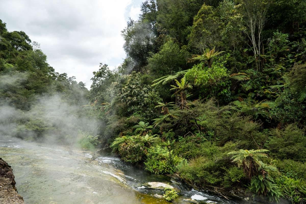 Schwefeldampf im Waimangu Volcanic Valley in Neuseeland