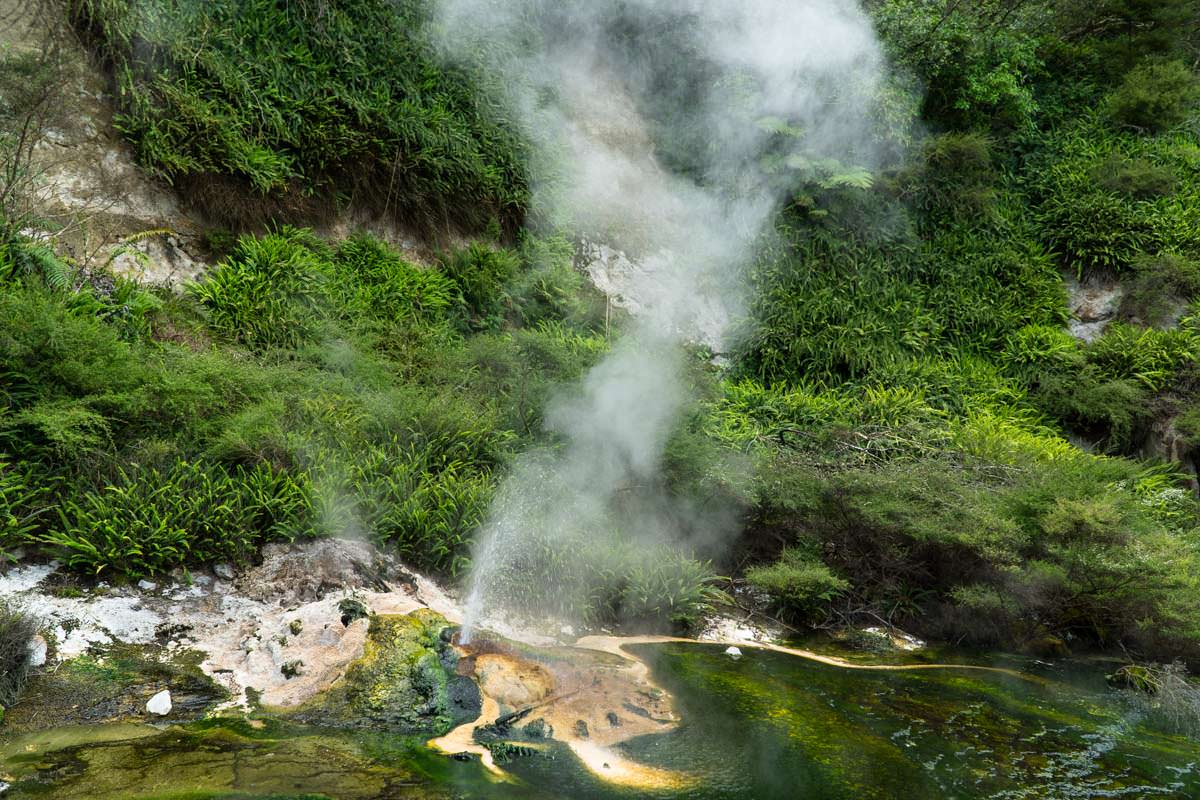 Mini-Geysir im Waimangu Volcanic Valley in Neuseeland