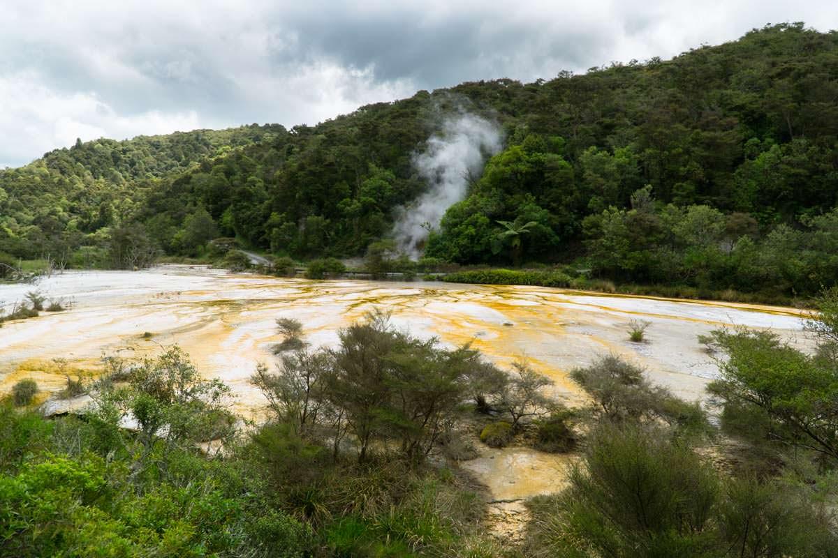 Sinterterrassen im Waimangu Volcanic Valley in Neuseeland