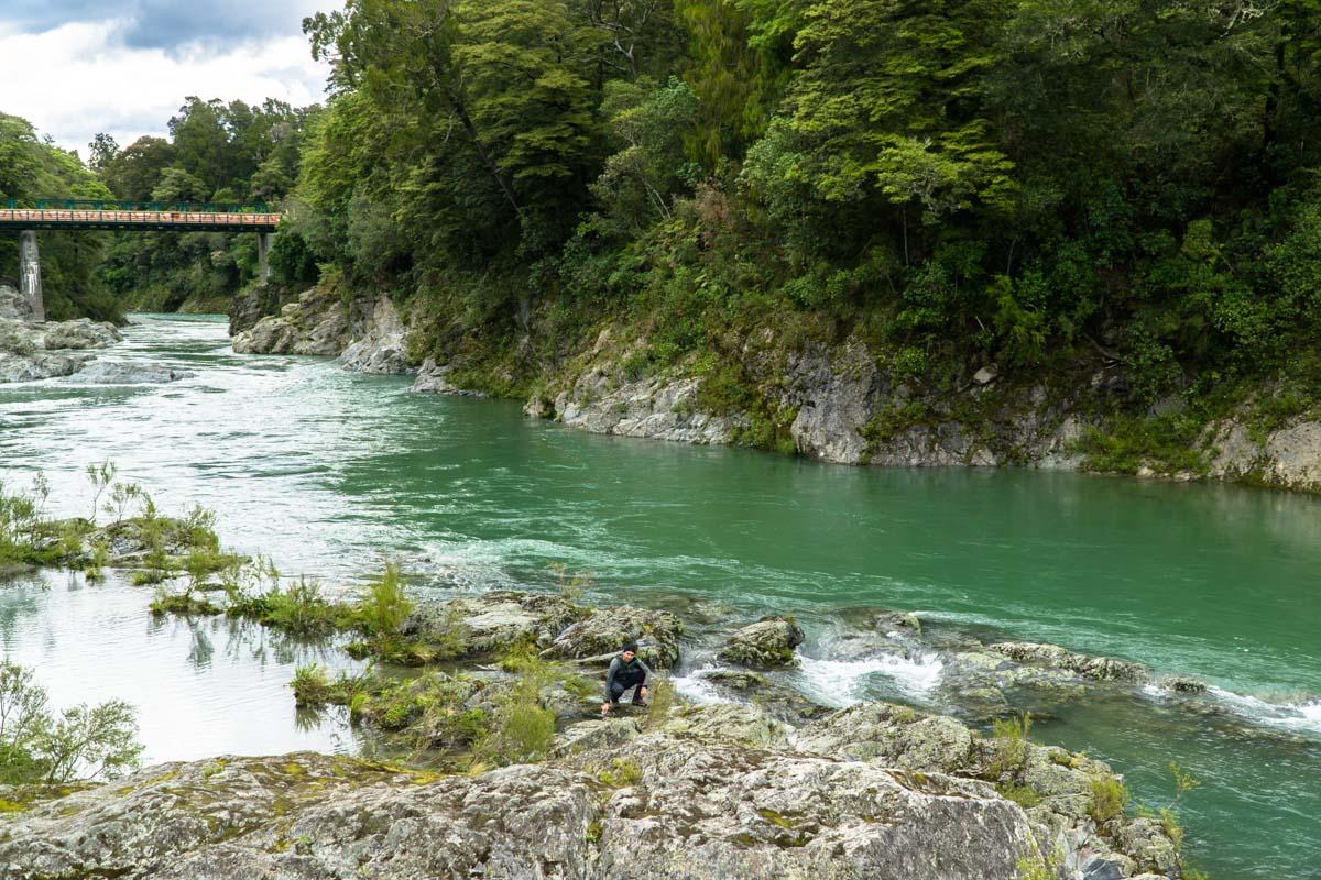 Pelorus Bridge Scenic Reserve in Neuseeland