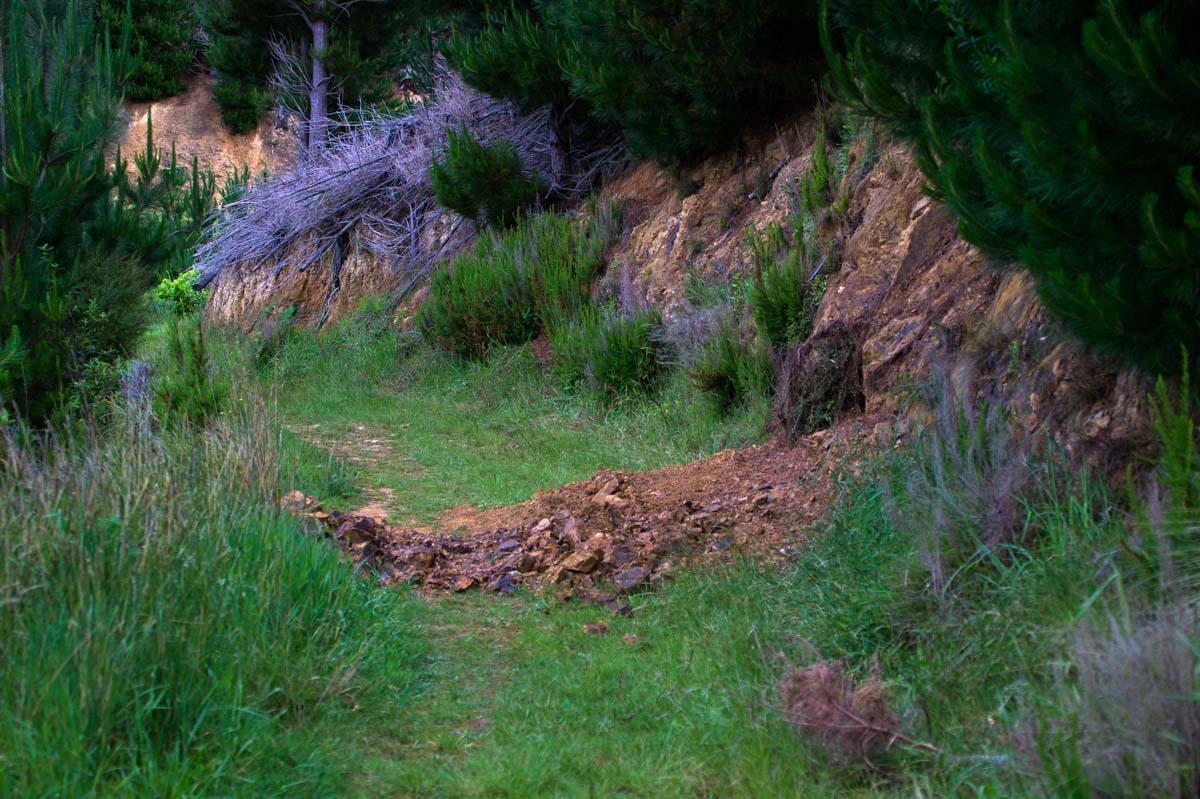 Erdrutsche am Archer Track in Neuseeland