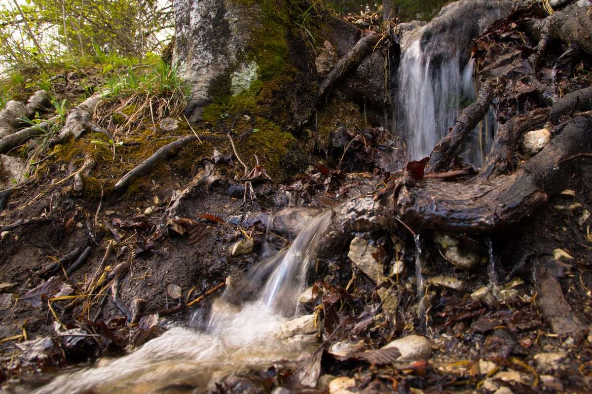 Kleiner Wasserfall am Ufer des Alpsee in Füssen