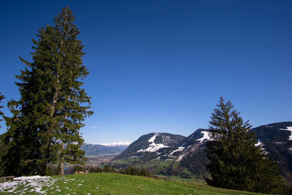 Landschaft am Alpsee in Immenstadt