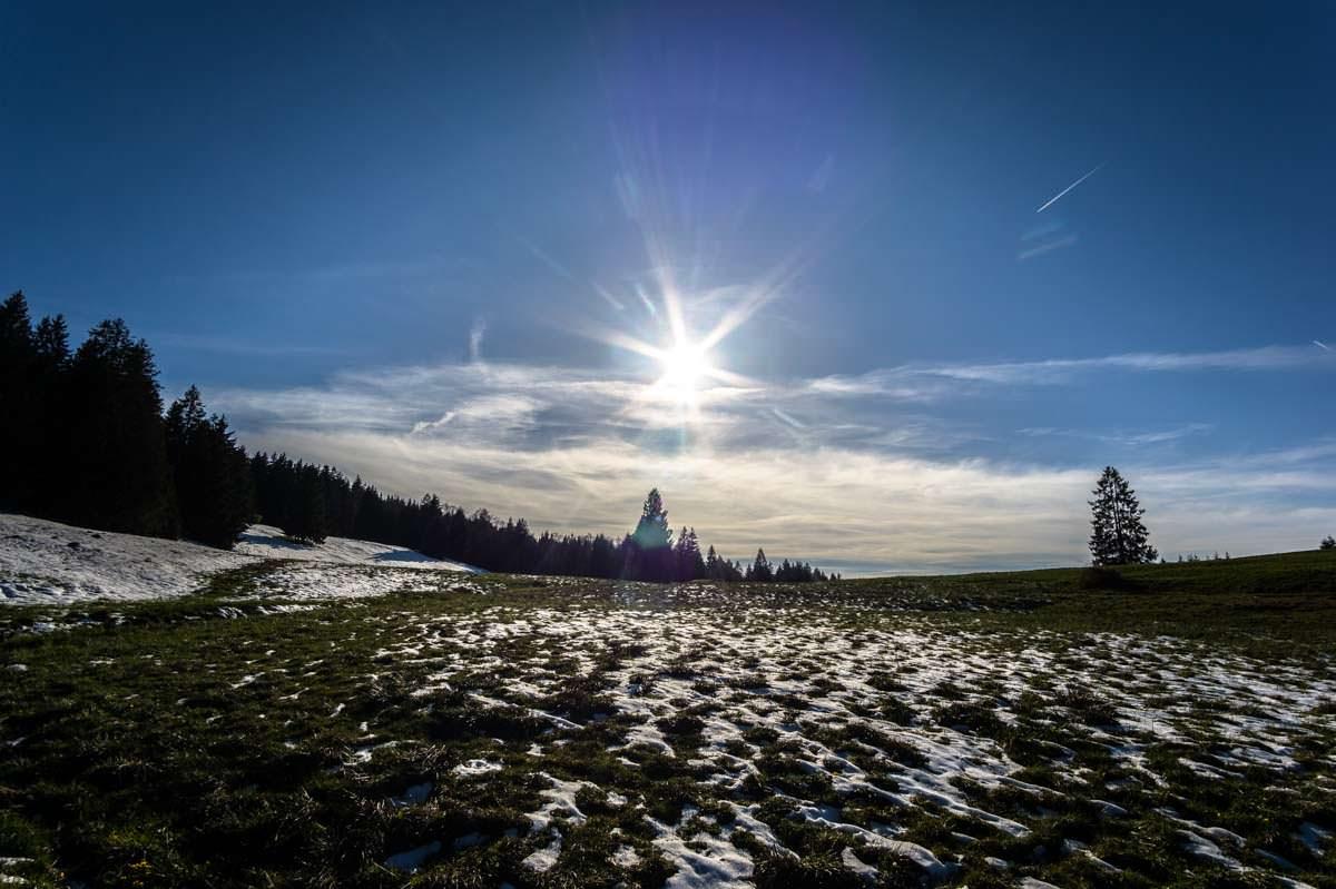 Die Pfarralpe am Alpsee