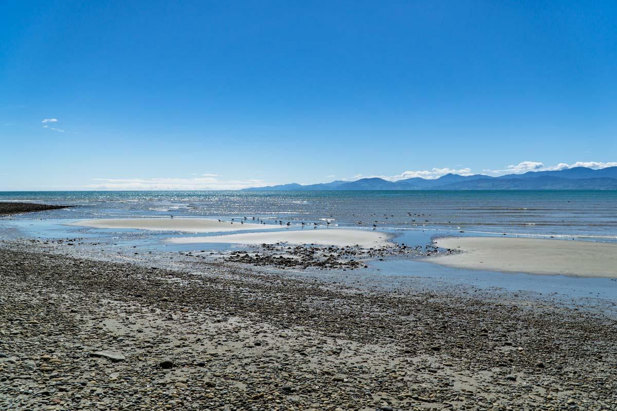 Strand vor Nelson in Neuseeland