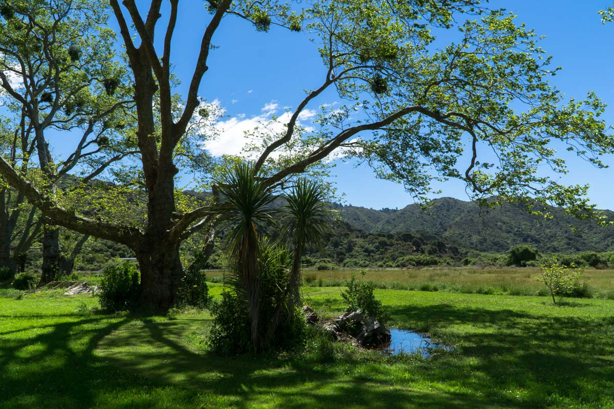Totaranui Campground im Abel Tasman Nationalpark in Neuseeland
