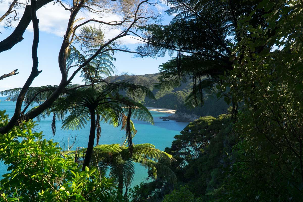 Blick auf die Mutton Cove im Abel Tasman Nationalpark