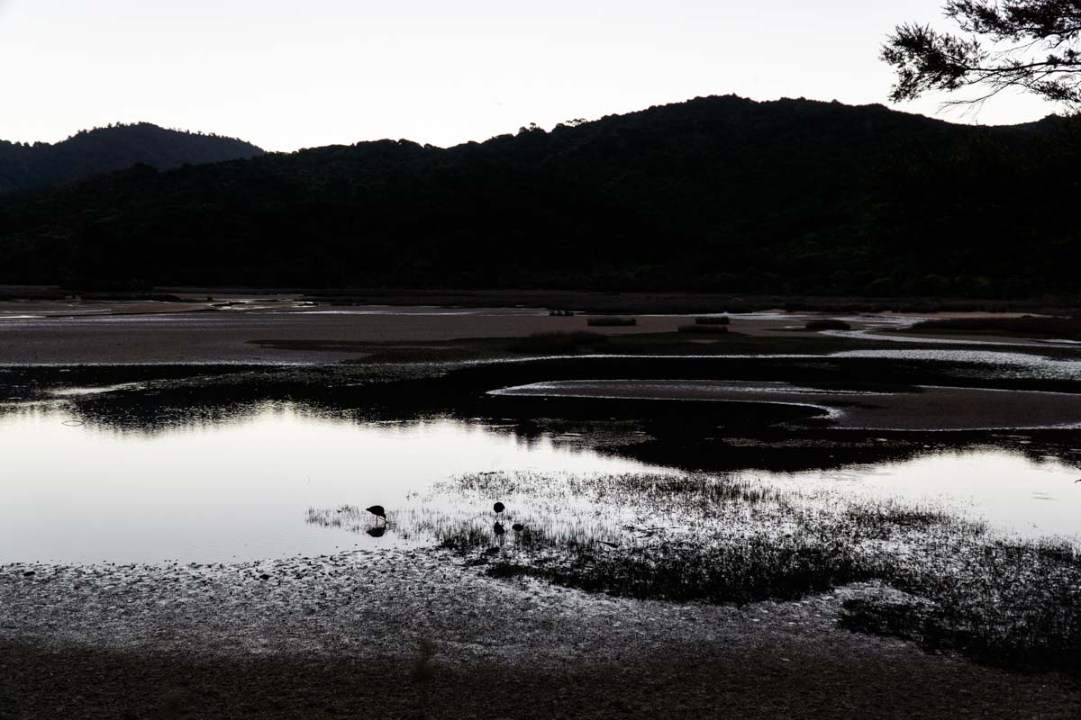 Abendstimmung in der Lagune vom Abel Tasman Nationalpark
