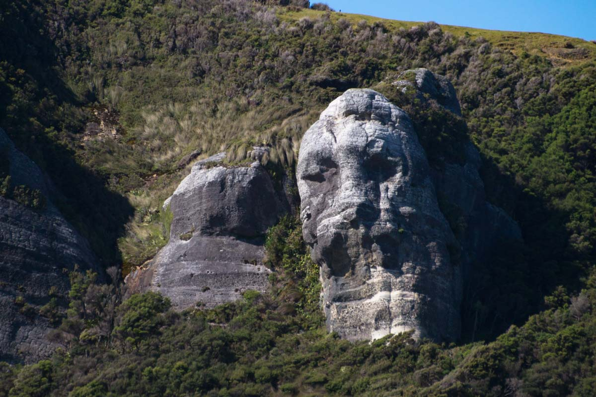 Gesicht im Fels am Cape Farewell