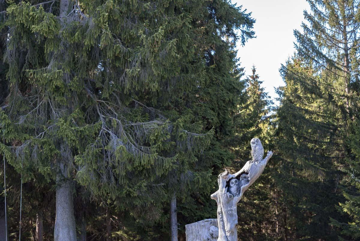 Schnitzerei an der Tschafonhütte in den Dolomiten