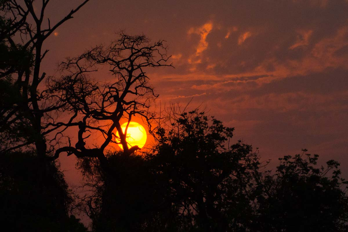 Sonnenuntergang im Chobe NP in Botswana