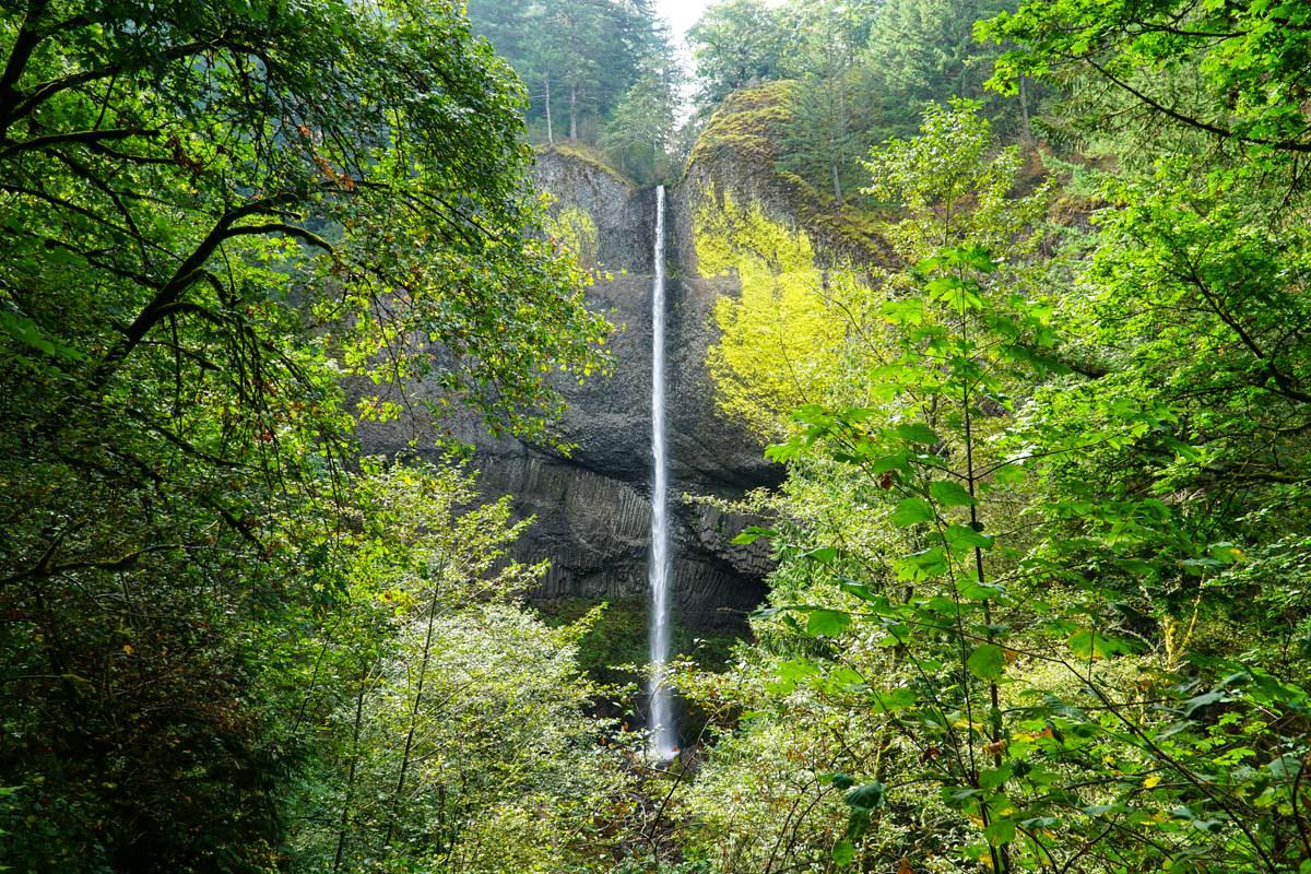 Wasserfall an Columbia River Gorge (Washington)