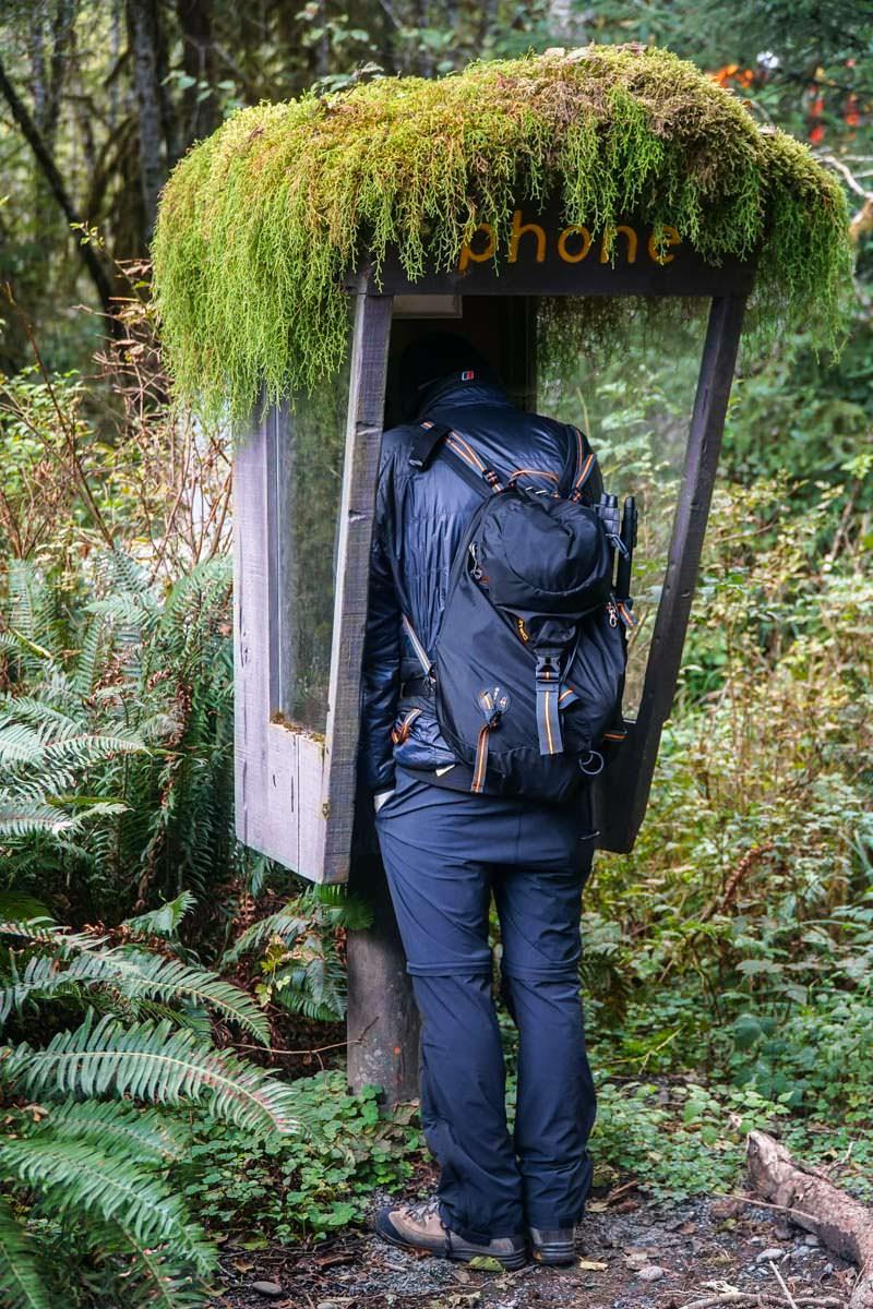 Telefonzelle im Hoh Rain Regenwald (Olympic Nationalpark)