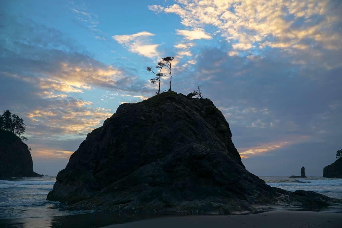 Second Beach (Olympic Nationalpark)