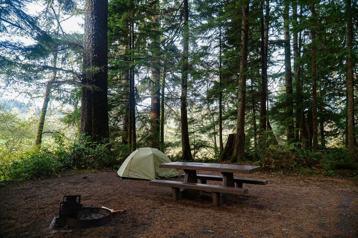 Stellplatz im Mora Campground (Olympic Nationalpark)