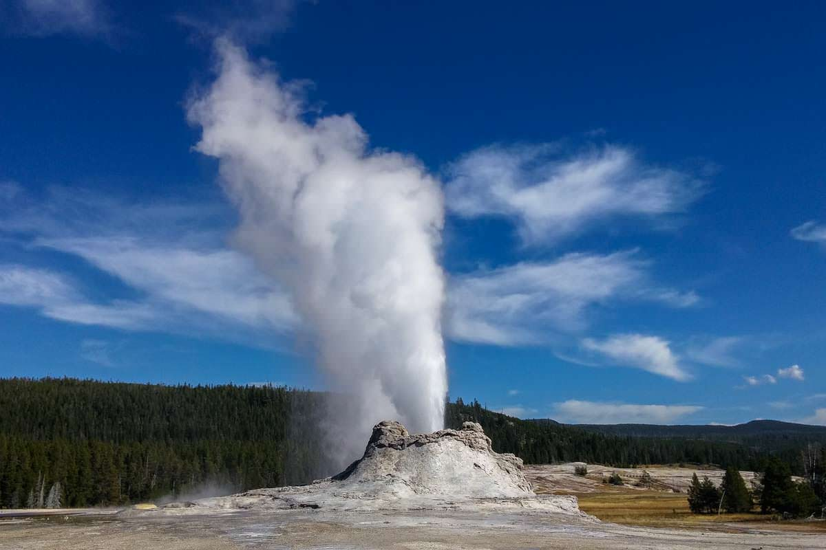 Castle Geysir im Yellowstone NP