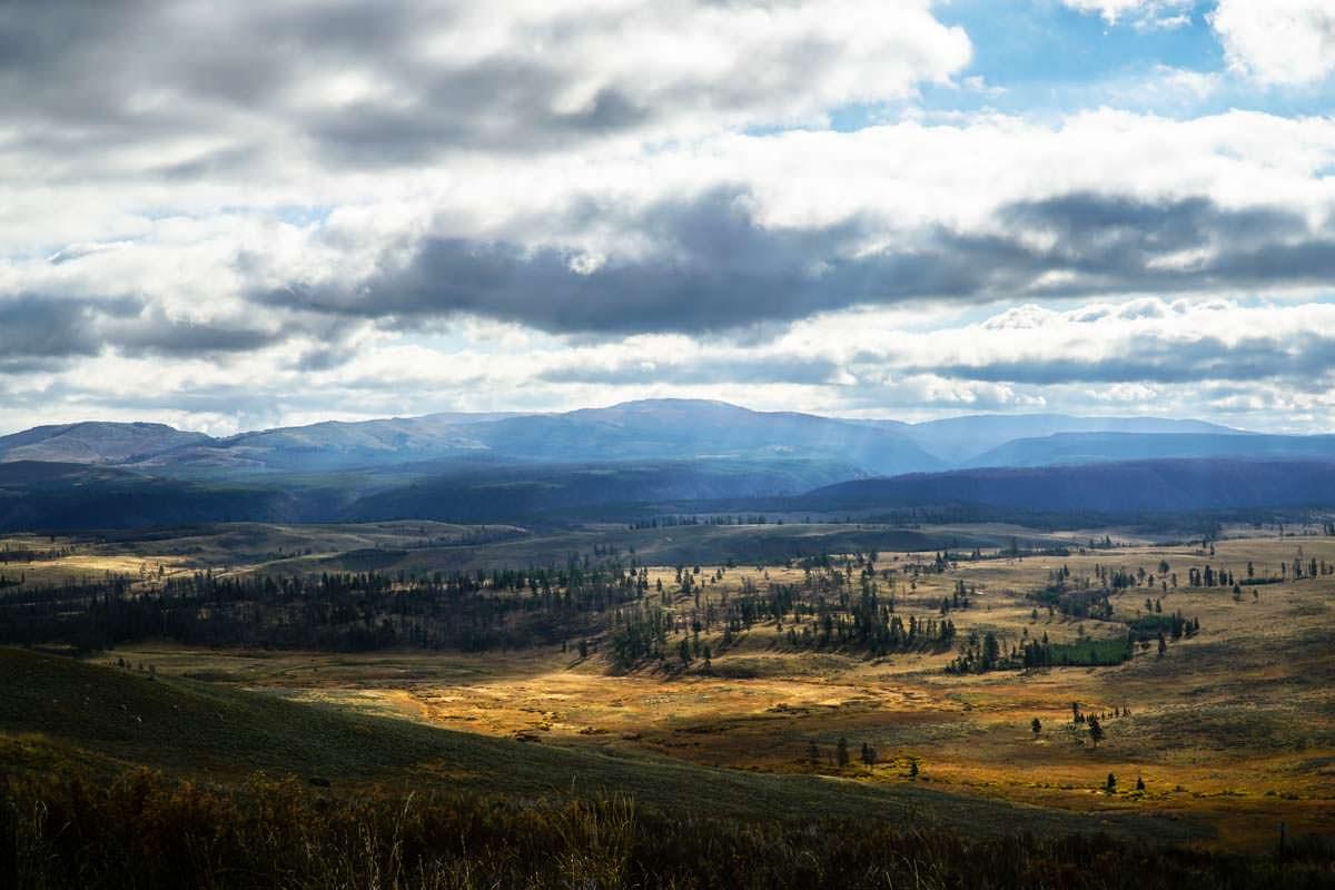 Ausblick vom Mount Washburn im Yellowstone NP