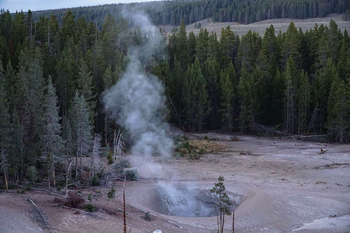 Mud Volcano im Yellowstone NP