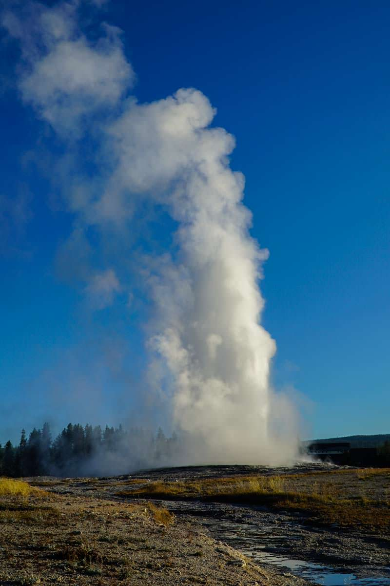 Old Faithful Geysir im Yellowstone NP