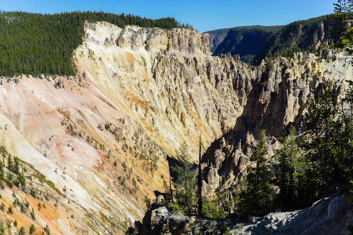 Gelber Sandstein im Yellowstone NP