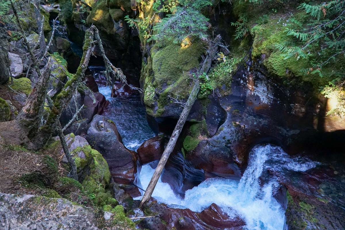 Unser Tipp: Eine Wanderung im Avalanche Creek im Glacier Nationalpark