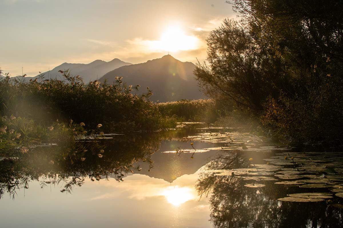 Sonnenuntergang am Skadar See (Montenegro)