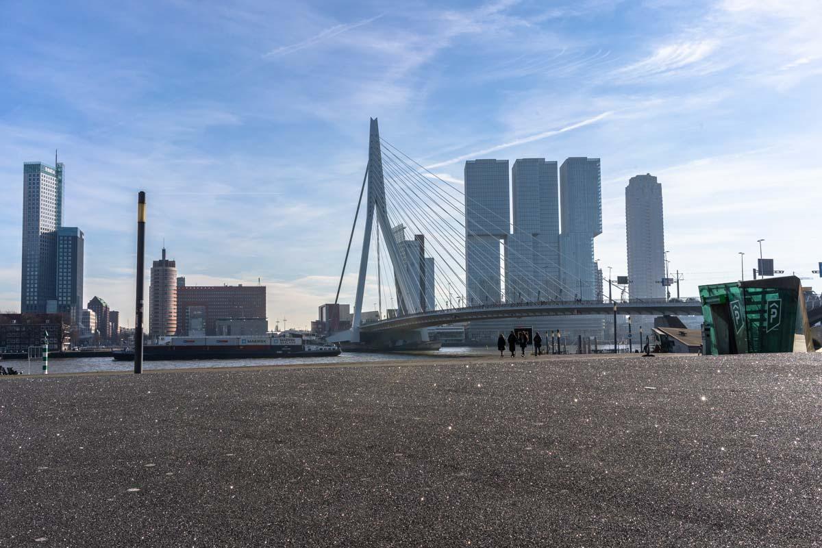 Neue Maas und Erasmusbrug in Rotterdam