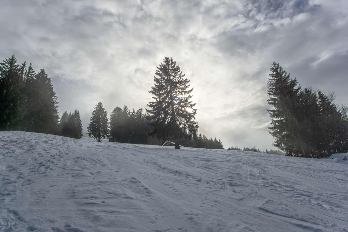 Das ehemalige Skigebiet am Grünten im Allgäu