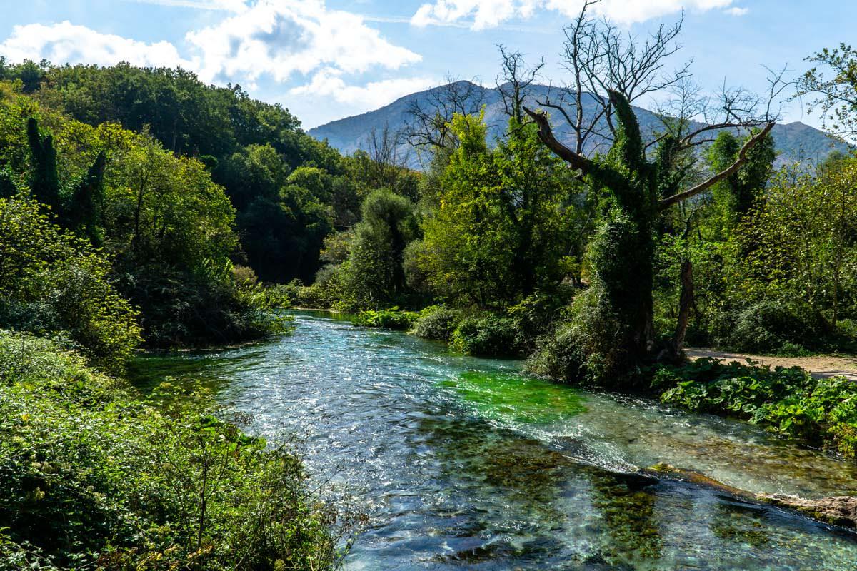 Platanen- und Eichenwald (Syri i Kaltër, Albanien)