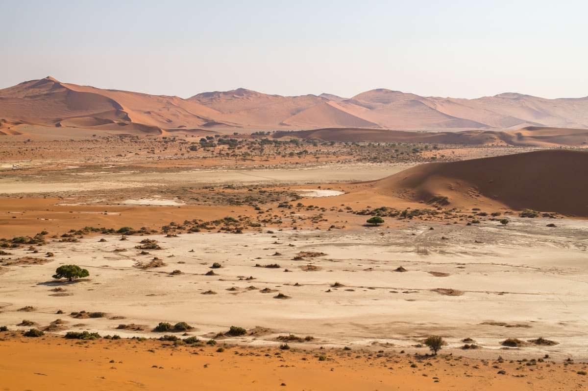 Aussicht von der Big Daddy Dune über die Sossuvlei