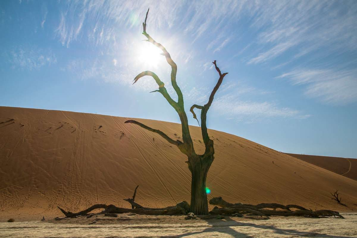 Big Daddy Dune am Deadvlei