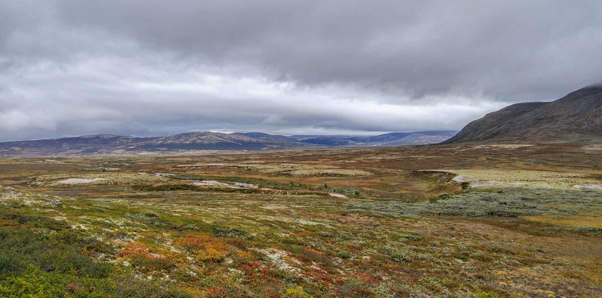 Das Hochplateau vom Dovrefjell Nationalpark