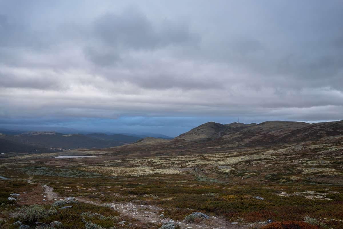 Berge und Moor bei Hjerkinn im Dovrefjell Nationalpark