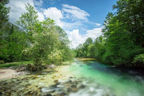 Wanderung vom Bohinj See zum Savica Wasserfall