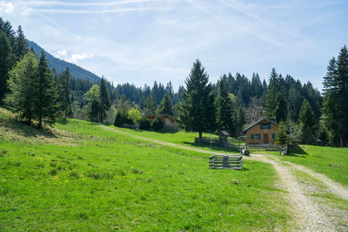 Die Wiesen der Unteren Alpe leuchten in einem satten Grün