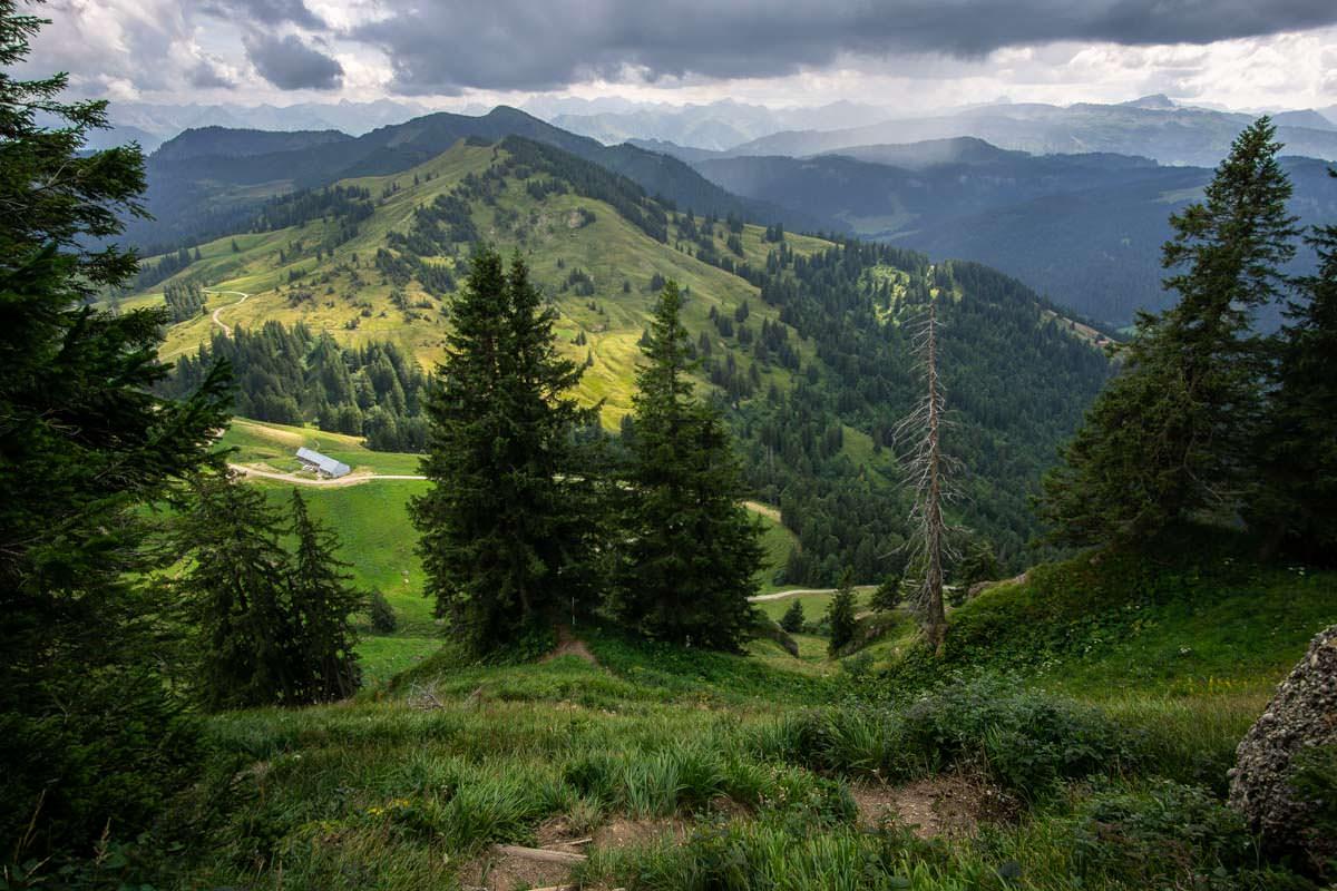 Die Obere Wilhelmine Alpe im Allgäu