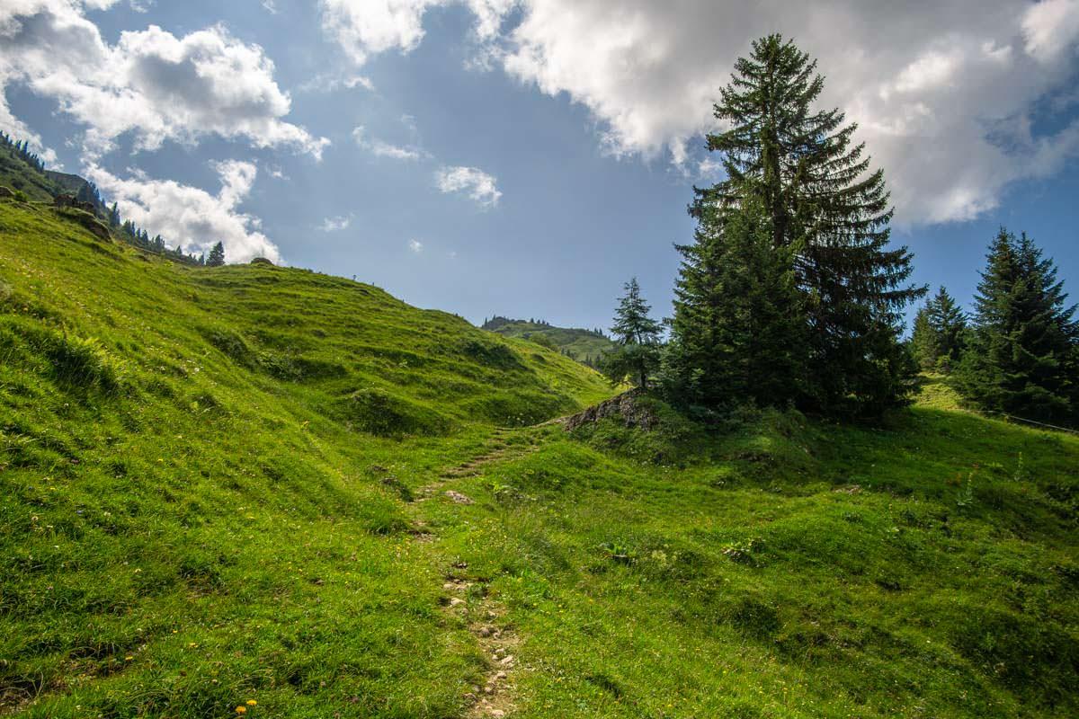 Wanderweg über die Siplinger Alpe zum Siplinger Kopf