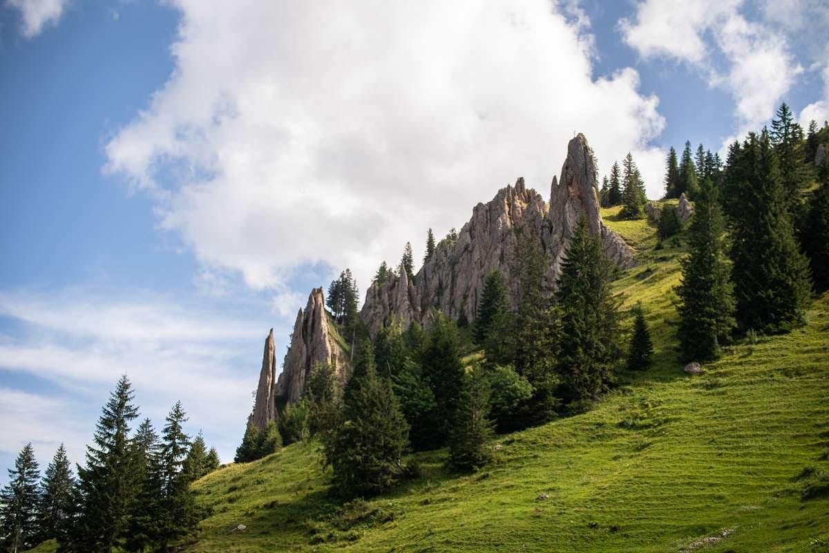 Nagelfluhgestein im Naturpark Nagelfluhkette