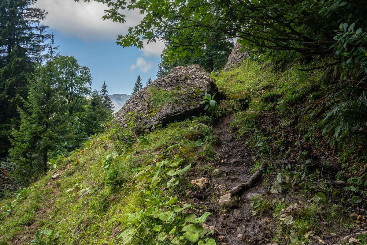Der Wanderweg zur Hirschgundalpe verläuft sich stellenweise etwas