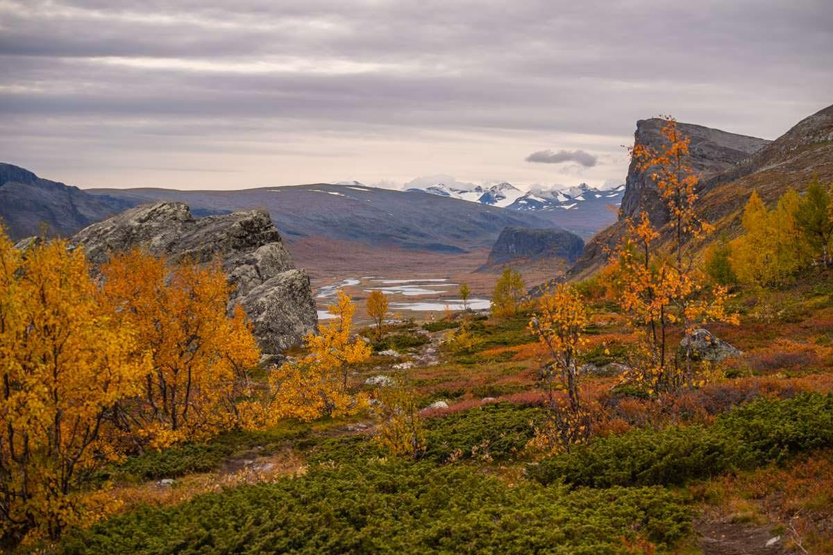Der Sarek Nationalpark in den bunten Farben des Herbstes
