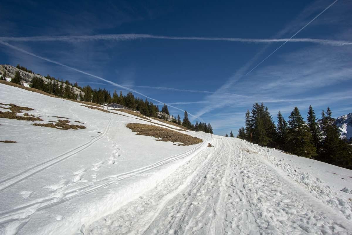 Auf der breiten Rodelbahn am Breitenberg kann man auch Winterwandern